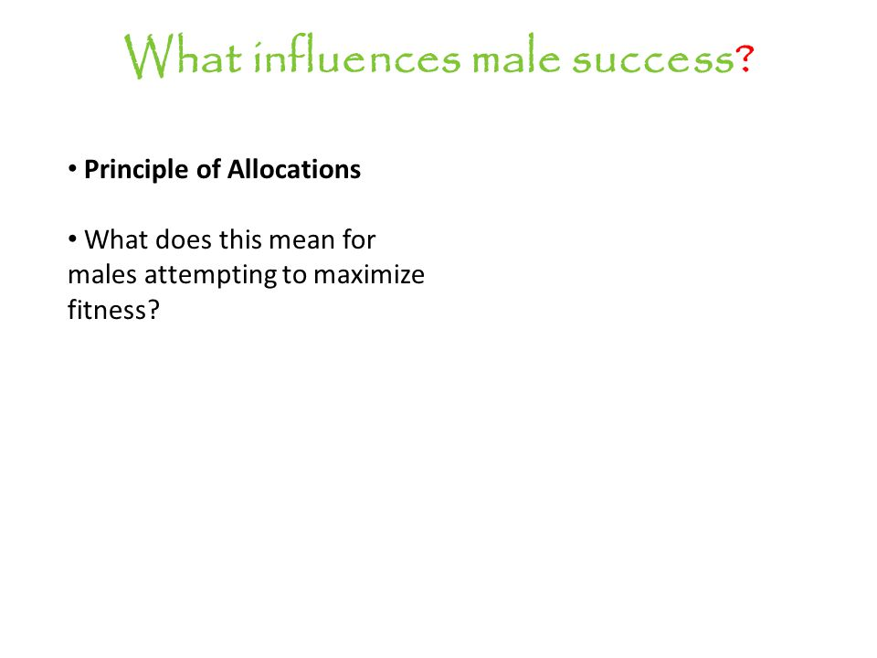 What influences male success.