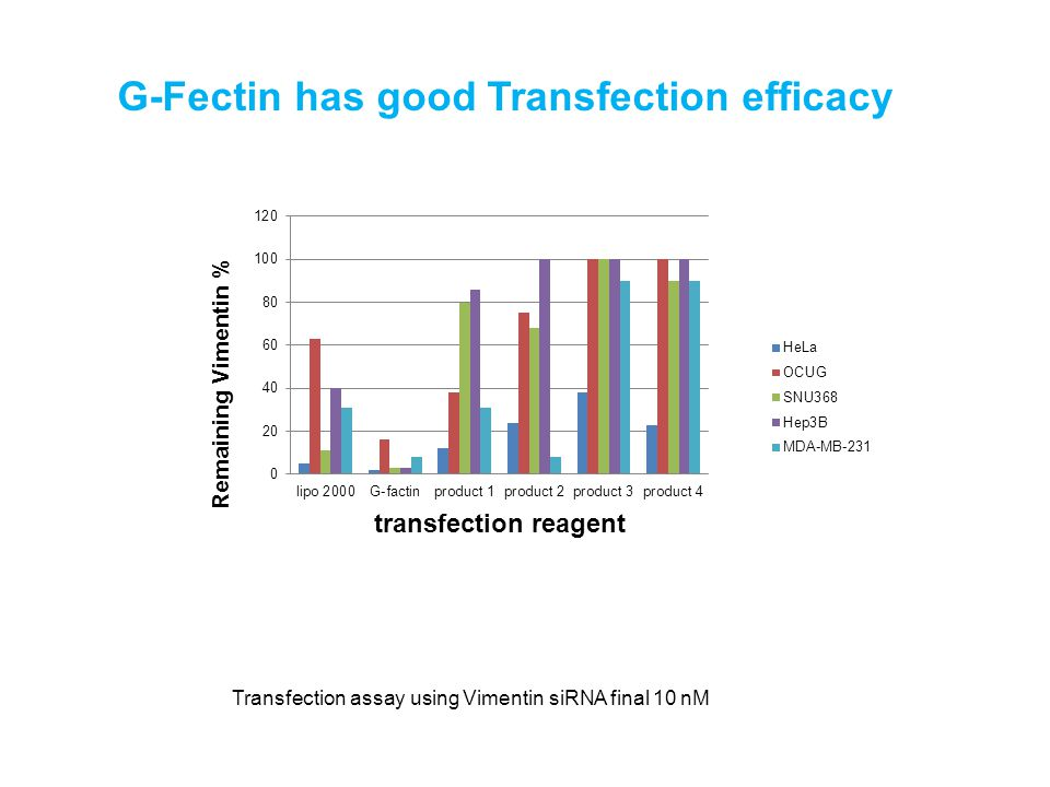 G-Fectin has good Transfection efficacy Transfection assay using Vimentin siRNA final 10 nM