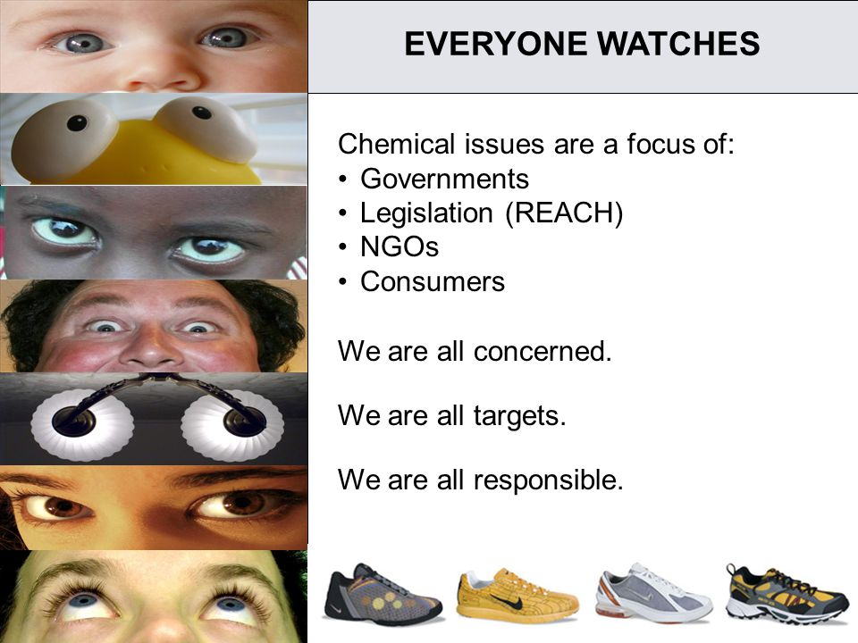 3 EVERYONE WATCHES Chemical issues are a focus of: Governments Legislation (REACH) NGOs Consumers We are all concerned. We are all targets. We are all