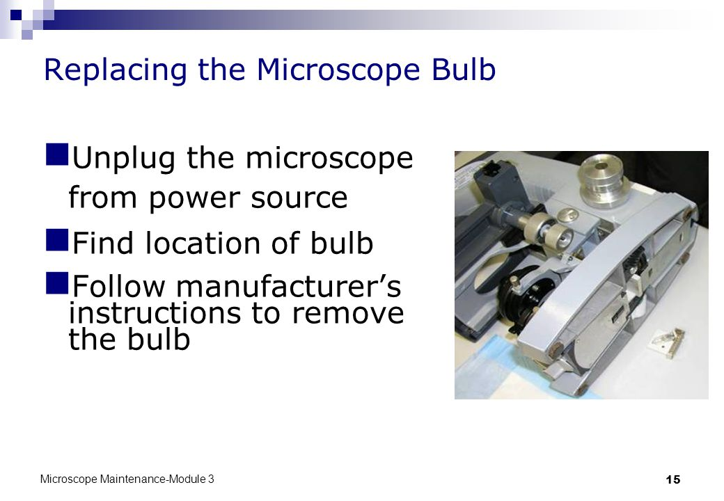Microscope Maintenance-Module 3 15 Replacing the Microscope Bulb Unplug the microscope from power source Find location of bulb Follow manufacturer's instructions to remove the bulb