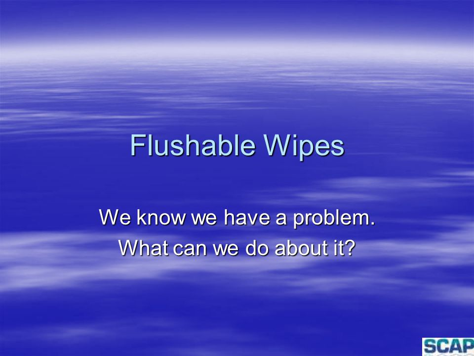 Flushable Wipes We know we have a problem. What can we do about it