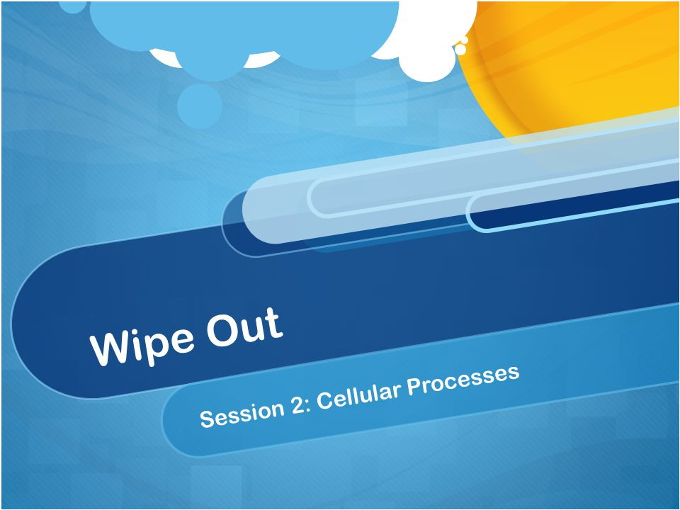 Wipe Out Session 2: Cellular Processes