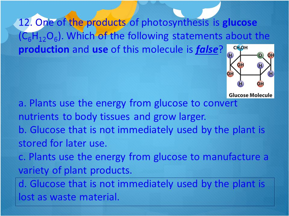12. One of the products of photosynthesis is glucose (C 6 H 12 O 6 ). Which of the following statements about the production and use of this molecule