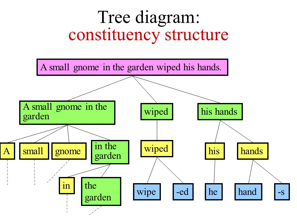 'Tree diagram' representation of grammatical structure A small gnome in the garden wiped his hands.