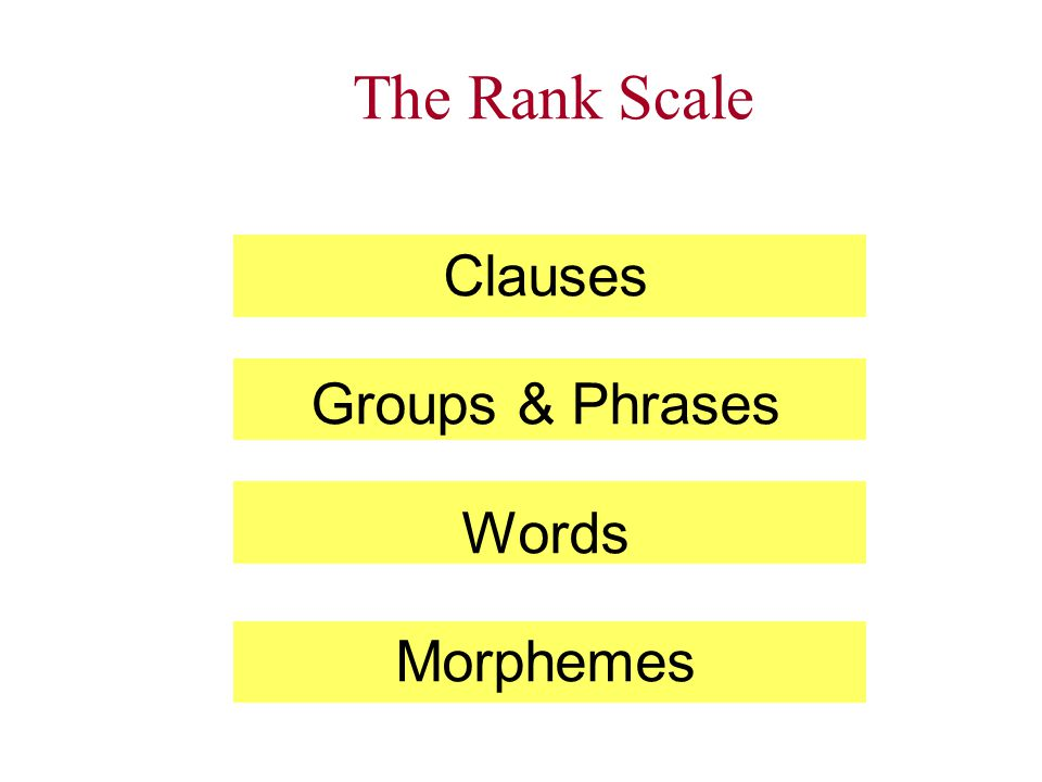 The Rank Scale Clauses Groups & Phrases Words Morphemes