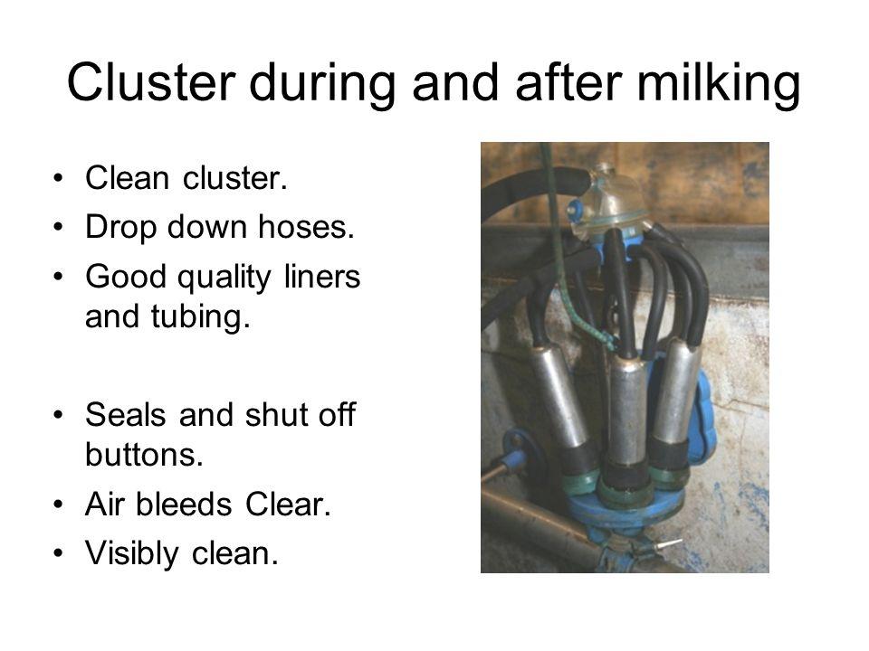 Main Milking machine faults Incorrect milk line fall