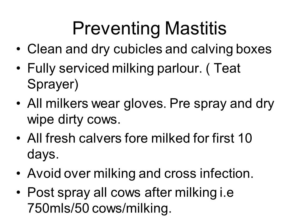 Preventing Mastitis Clean and dry cubicles and calving boxes Fully serviced milking parlour. ( Teat Sprayer) All milkers wear gloves. Pre spray and dr