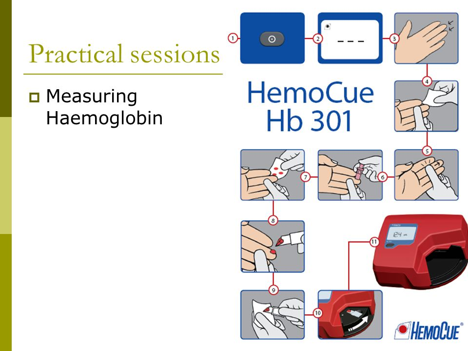 Practical sessions  Measuring Haemoglobin