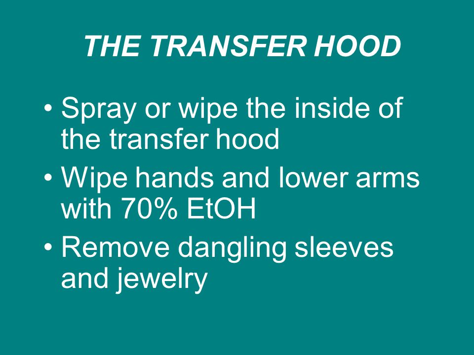 THE TRANSFER HOOD Spray or wipe the inside of the transfer hood Wipe hands and lower arms with 70% EtOH Remove dangling sleeves and jewelry