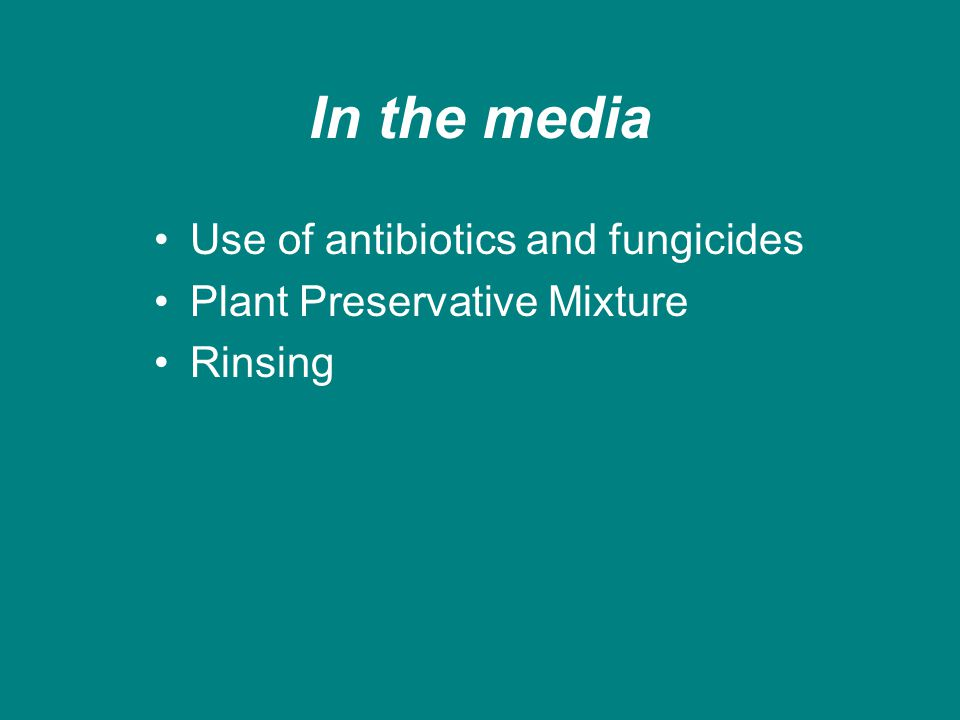 In the media Use of antibiotics and fungicides Plant Preservative Mixture Rinsing