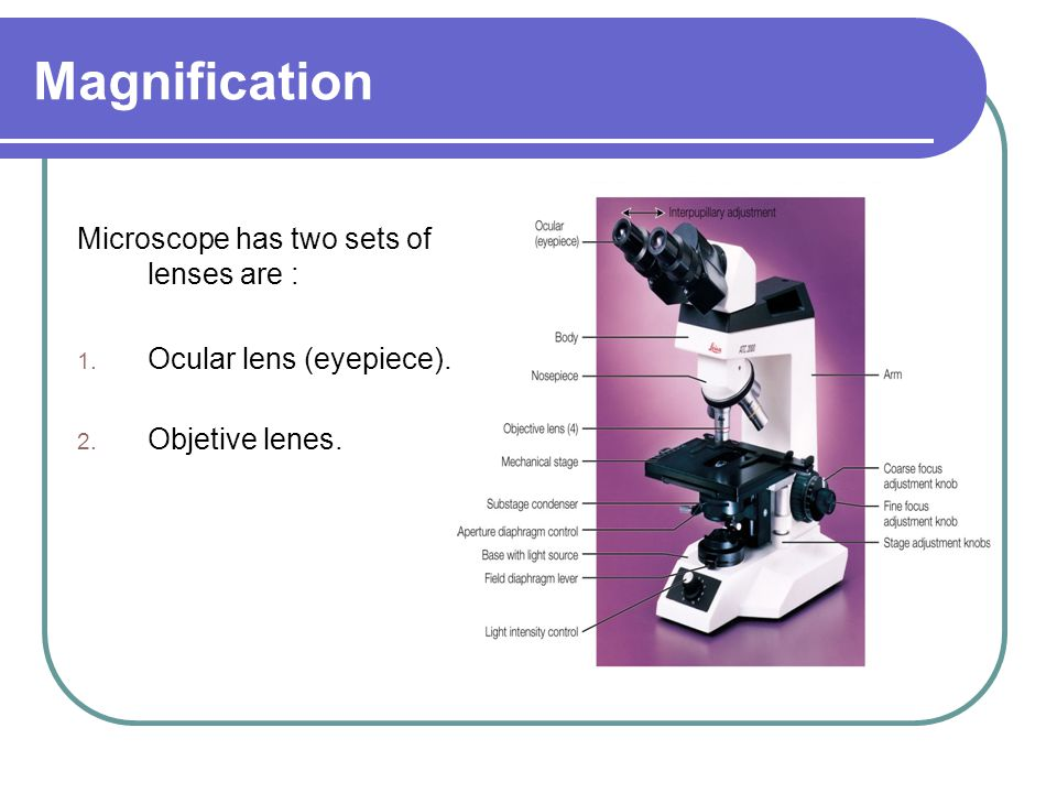 Magnification Microscope has two sets of lenses are : 1. Ocular lens (eyepiece). 2. Objetive lenes.