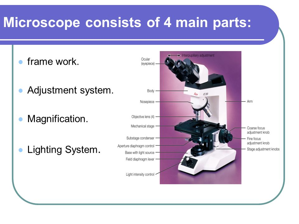 Microscope consists of 4 main parts: frame work. Adjustment system. Magnification. Lighting System.