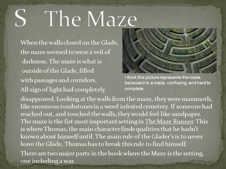 When the walls closed on the Glade, the maze seemed to wear a veil of darkness. The maze is what is outside of the Glade, filled with passages and cor