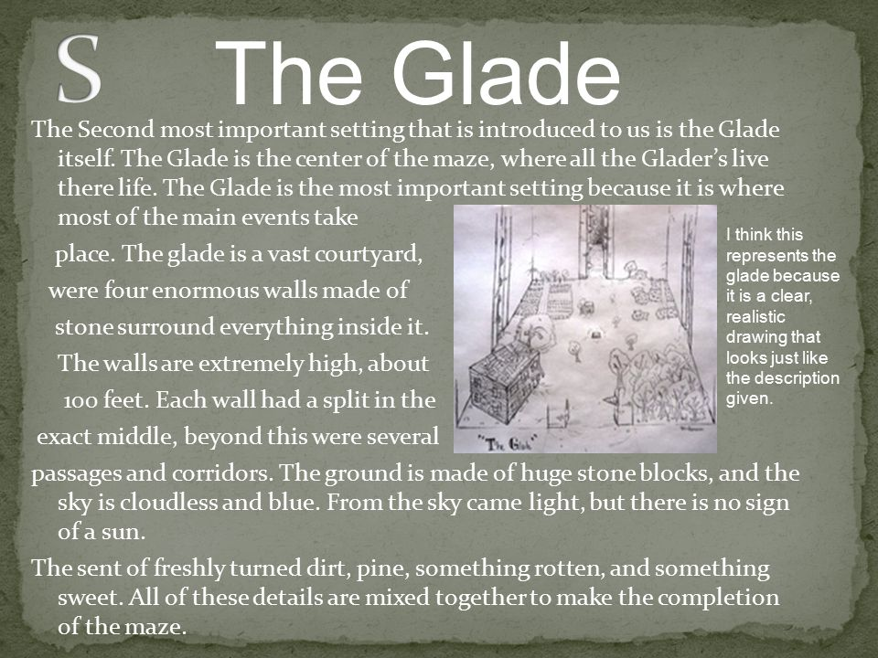The Second most important setting that is introduced to us is the Glade itself. The Glade is the center of the maze, where all the Glader's live there