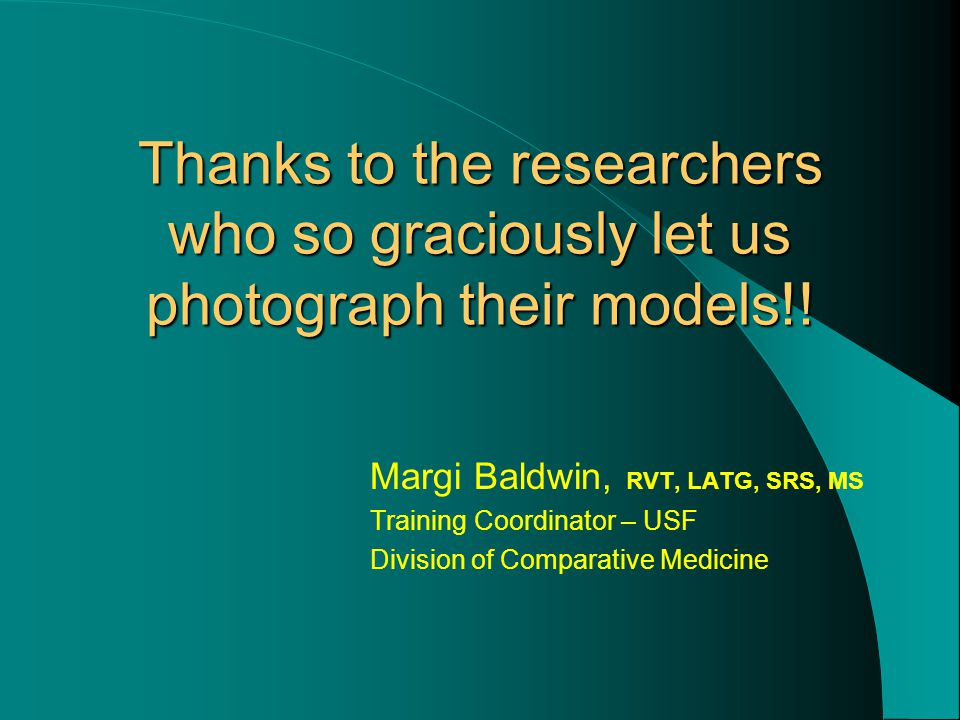 Thanks to the researchers who so graciously let us photograph their models!.
