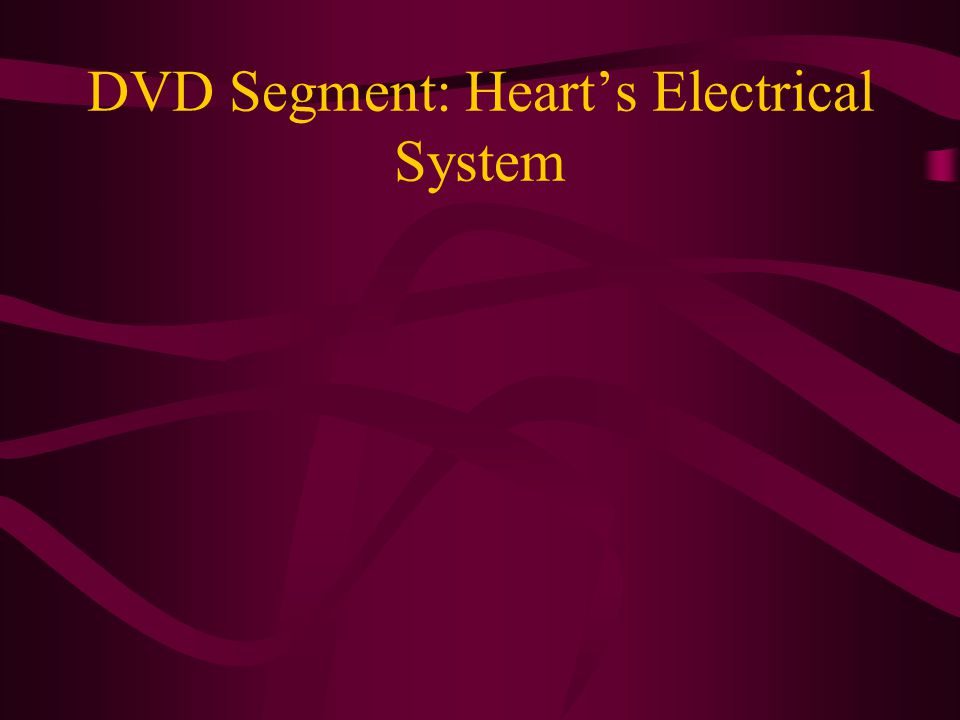 DVD Segment: Heart's Electrical System