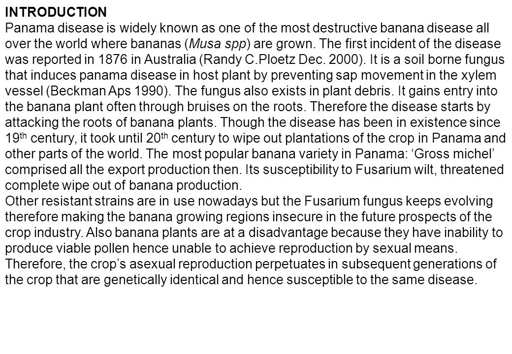 INTRODUCTION Panama disease is widely known as one of the most destructive banana disease all over the world where bananas (Musa spp) are grown. The f