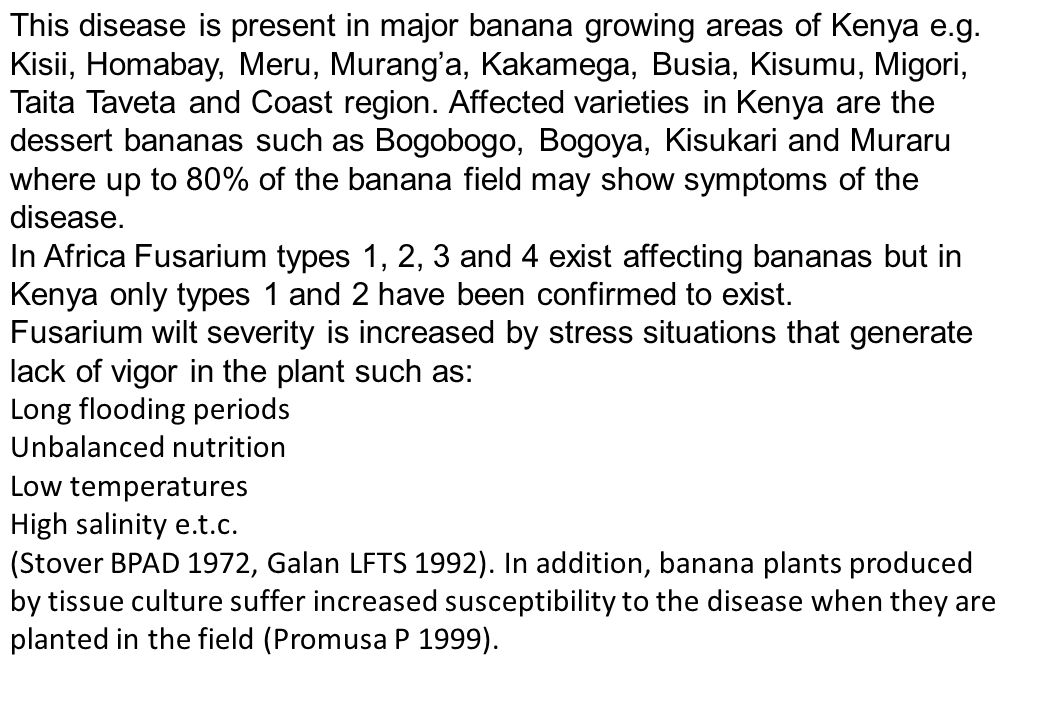 This disease is present in major banana growing areas of Kenya e.g. Kisii, Homabay, Meru, Murang'a, Kakamega, Busia, Kisumu, Migori, Taita Taveta and