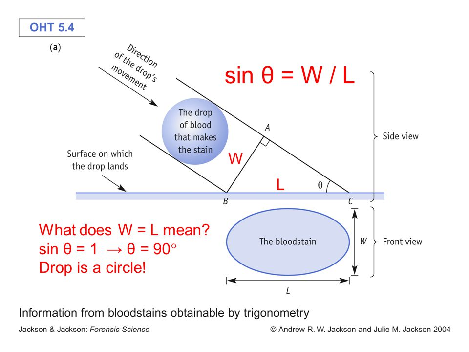 sin θ = W / L W L What does W = L mean sin θ = 1 → θ = 90  Drop is a circle!