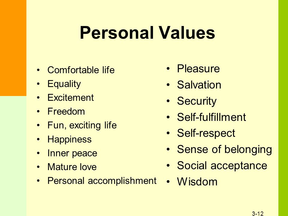3-12 Personal Values Comfortable life Equality Excitement Freedom Fun, exciting life Happiness Inner peace Mature love Personal accomplishment Pleasure Salvation Security Self-fulfillment Self-respect Sense of belonging Social acceptance Wisdom