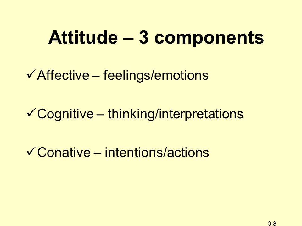 3-8 Attitude – 3 components Affective – feelings/emotions Cognitive – thinking/interpretations Conative – intentions/actions