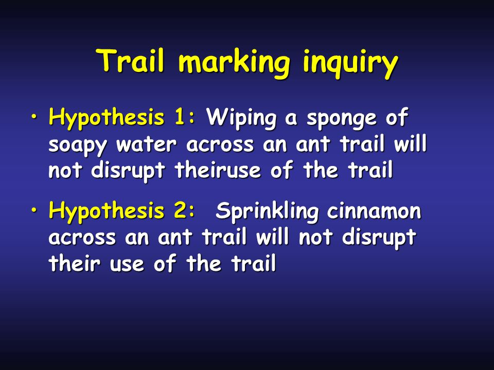 Trail marking inquiry Hypothesis 1: Wiping a sponge of soapy water across an ant trail will not disrupt theiruse of the trailHypothesis 1: Wiping a sponge of soapy water across an ant trail will not disrupt theiruse of the trail Hypothesis 2: Sprinkling cinnamon across an ant trail will not disrupt their use of the trailHypothesis 2: Sprinkling cinnamon across an ant trail will not disrupt their use of the trail