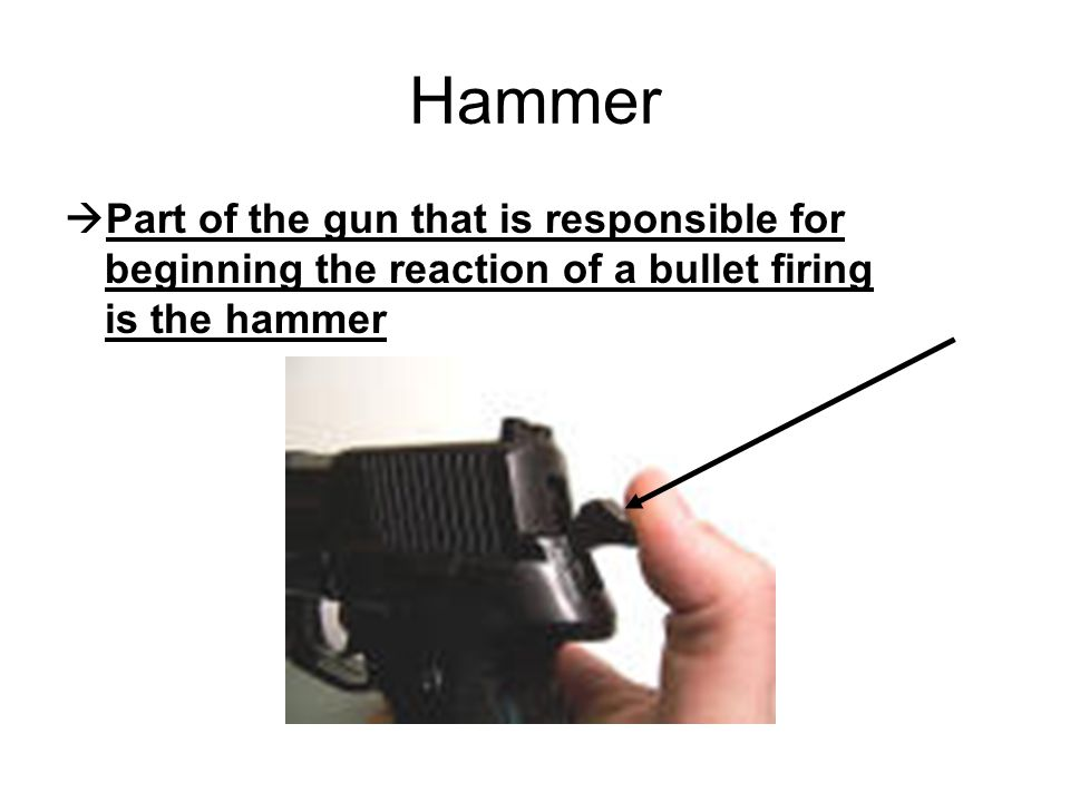 Hammer  Part of the gun that is responsible for beginning the reaction of a bullet firing is the hammer