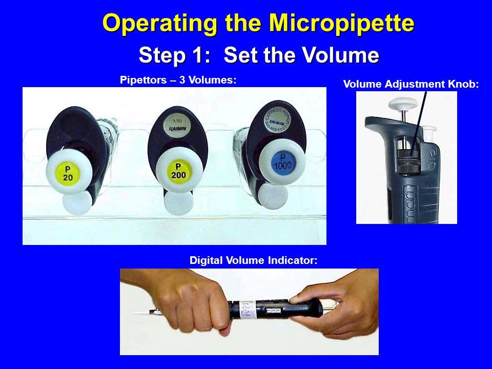 Volume Adjustment Knob: Digital Volume Indicator: Pipettors – 3 Volumes: Step 1: Set the Volume Operating the Micropipette
