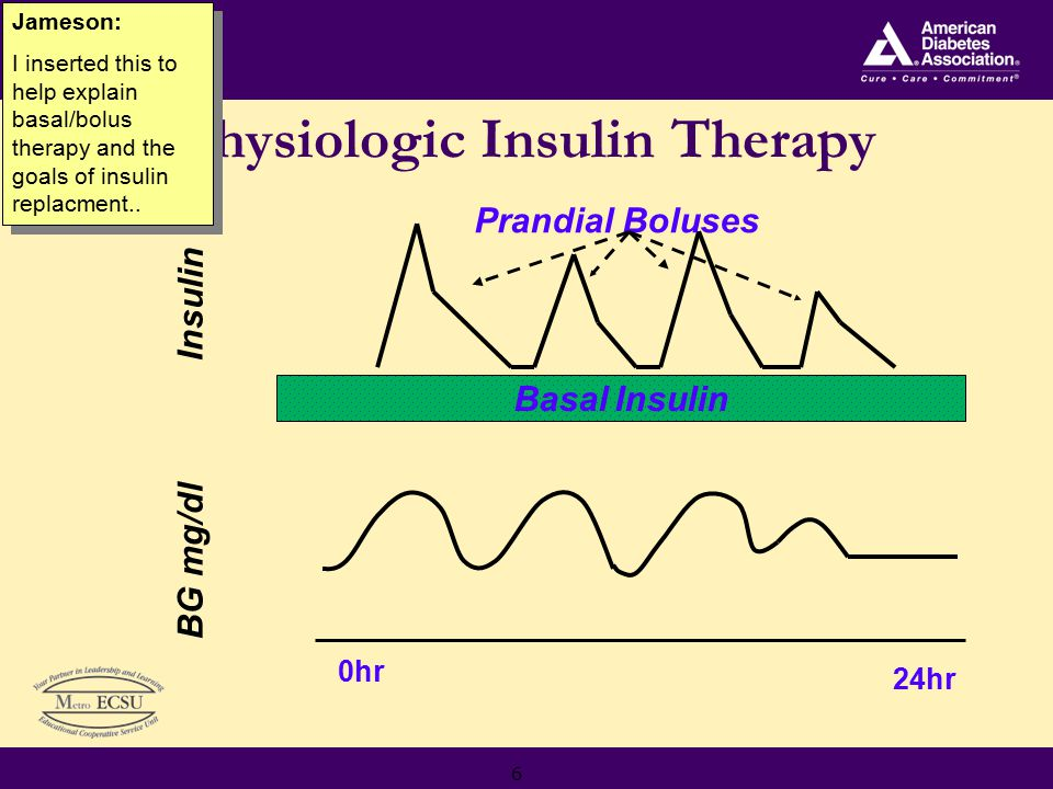 6 Basal Insulin Prandial Boluses Insulin 0hr 24hr BG mg/dl Physiologic Insulin Therapy Jameson: I inserted this to help explain basal/bolus therapy and the goals of insulin replacment..