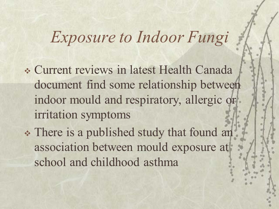 Exposure to Indoor Fungi  Current reviews in latest Health Canada document find some relationship between indoor mould and respiratory, allergic or irritation symptoms  There is a published study that found an association between mould exposure at school and childhood asthma