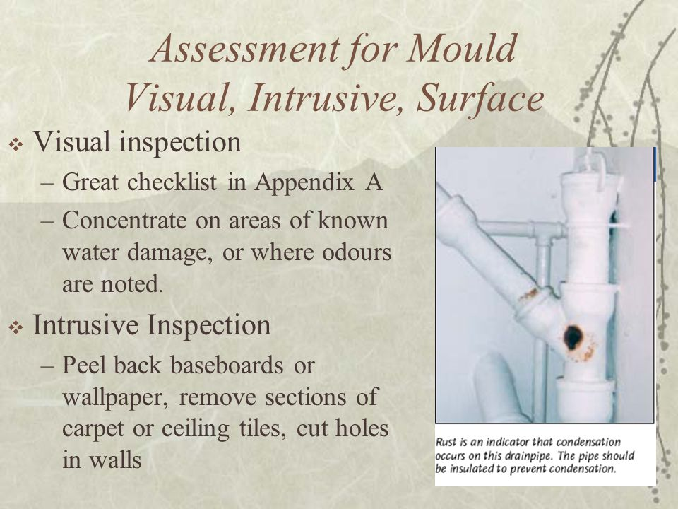 Assessment for Mould Visual, Intrusive, Surface  Visual inspection –Great checklist in Appendix A –Concentrate on areas of known water damage, or where odours are noted.