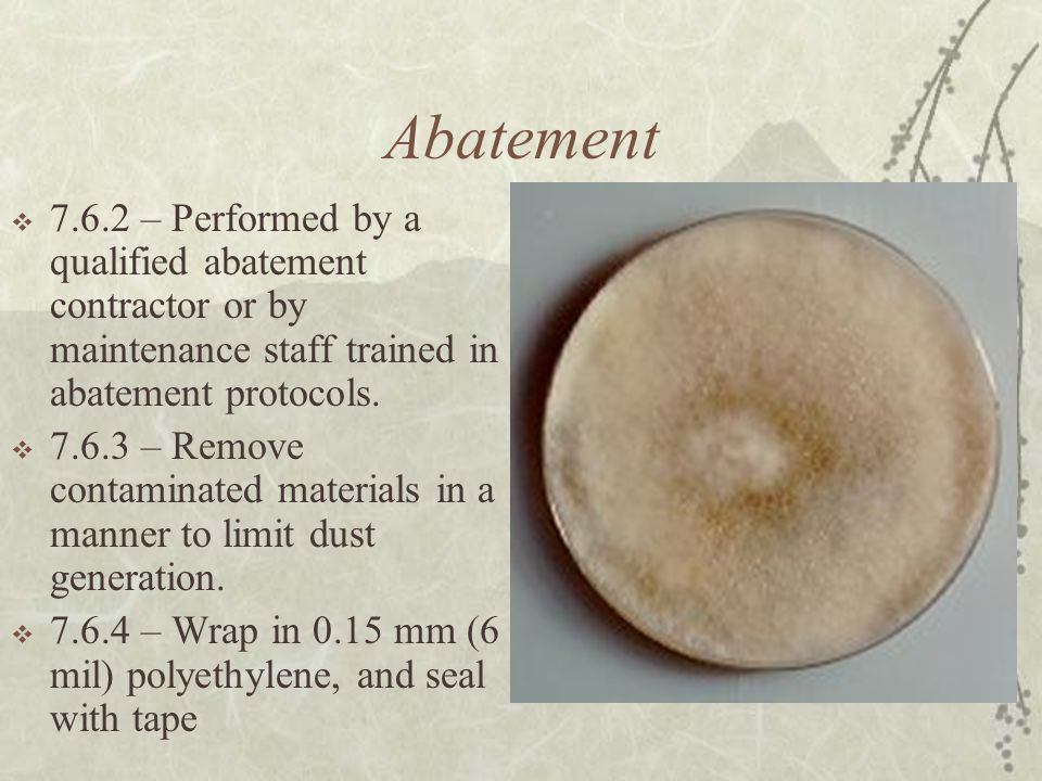 Abatement  7.6.2 – Performed by a qualified abatement contractor or by maintenance staff trained in abatement protocols.