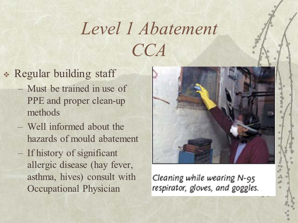 Level 1 Abatement CCA  Regular building staff –Must be trained in use of PPE and proper clean-up methods –Well informed about the hazards of mould abatement –If history of significant allergic disease (hay fever, asthma, hives) consult with Occupational Physician