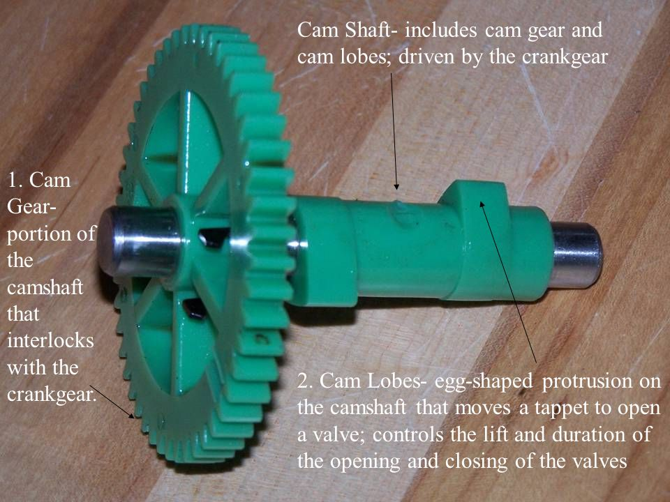 Cam Shaft- includes cam gear and cam lobes; driven by the crankgear 2. Cam Lobes- egg-shaped protrusion on the camshaft that moves a tappet to open a