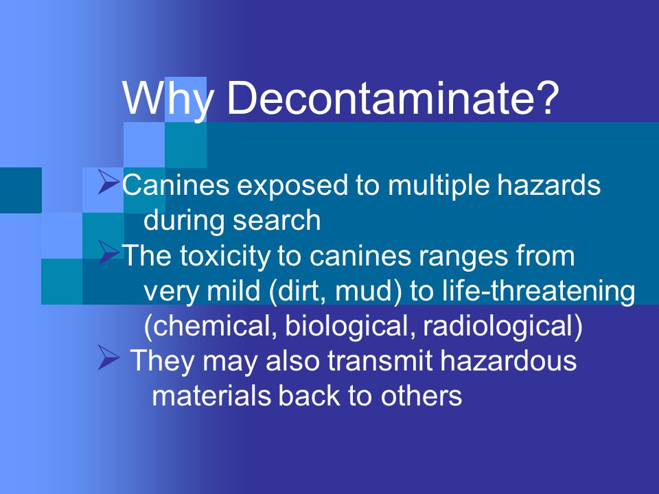 Why Decontaminate.