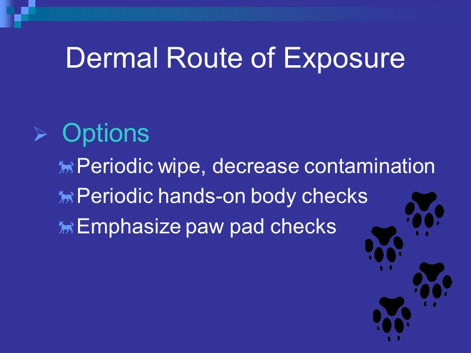 Dermal Route of Exposure  Options  Periodic wipe, decrease contamination  Periodic hands-on body checks  Emphasize paw pad checks