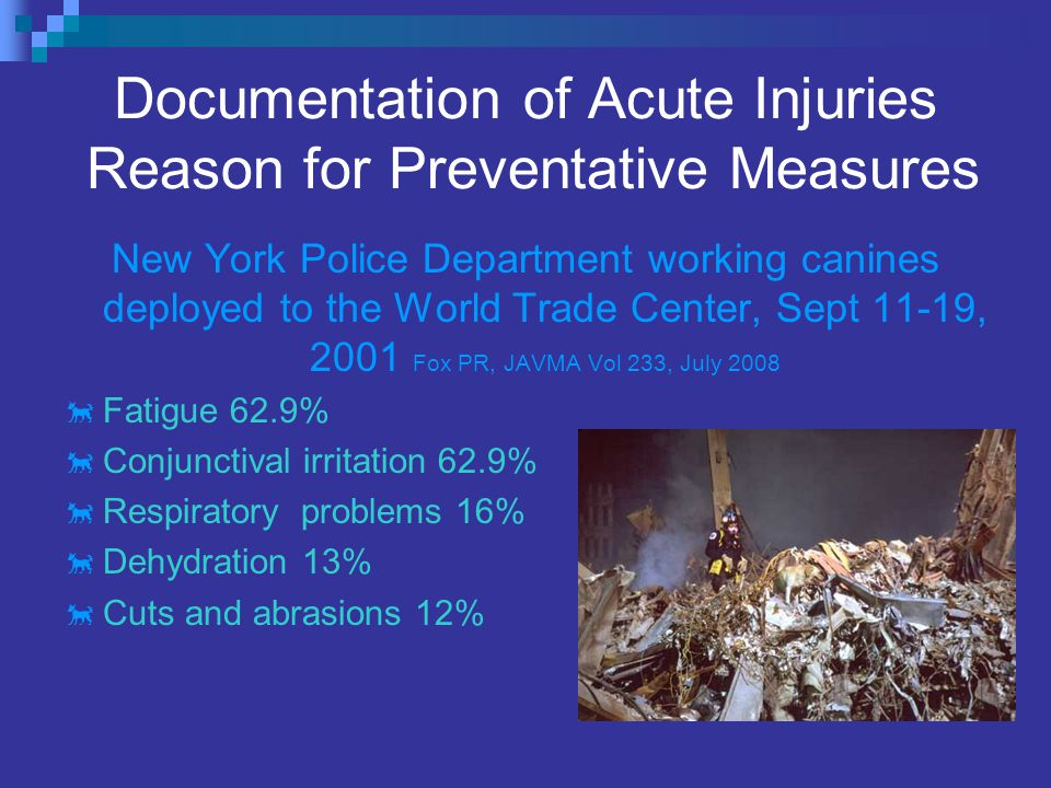 Documentation of Acute Injuries Reason for Preventative Measures New York Police Department working canines deployed to the World Trade Center, Sept 11-19, 2001 Fox PR, JAVMA Vol 233, July 2008  Fatigue 62.9%  Conjunctival irritation 62.9%  Respiratory problems 16%  Dehydration 13%  Cuts and abrasions 12%