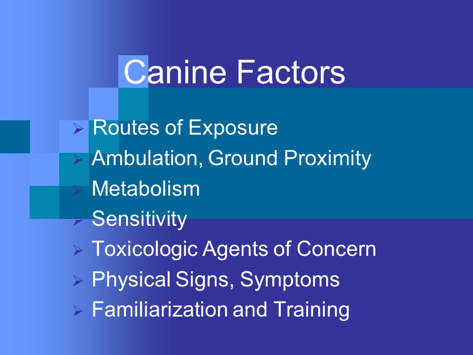Canine Factors  Routes of Exposure  Ambulation, Ground Proximity  Metabolism  Sensitivity  Toxicologic Agents of Concern  Physical Signs, Symptoms  Familiarization and Training