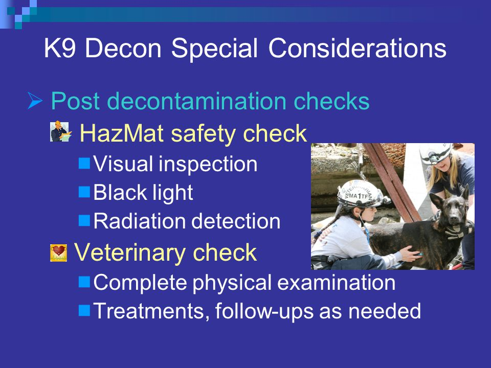 K9 Decon Special Considerations  Post decontamination checks HazMat safety check  Visual inspection  Black light  Radiation detection Veterinary check  Complete physical examination  Treatments, follow-ups as needed