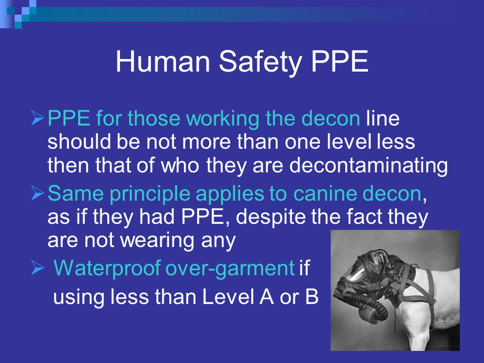 Human Safety PPE  PPE for those working the decon line should be not more than one level less then that of who they are decontaminating  Same principle applies to canine decon, as if they had PPE, despite the fact they are not wearing any  Waterproof over-garment if using less than Level A or B