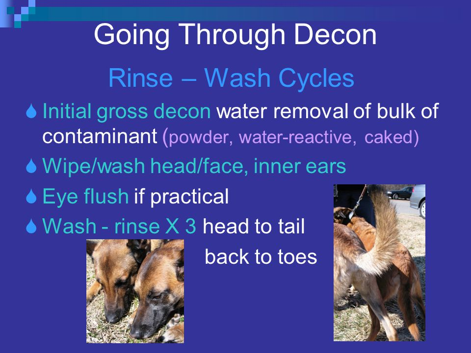 Going Through Decon Rinse – Wash Cycles  Initial gross decon water removal of bulk of contaminant ( powder, water-reactive, caked)  Wipe/wash head/face, inner ears  Eye flush if practical  Wash - rinse X 3 head to tail back to toes