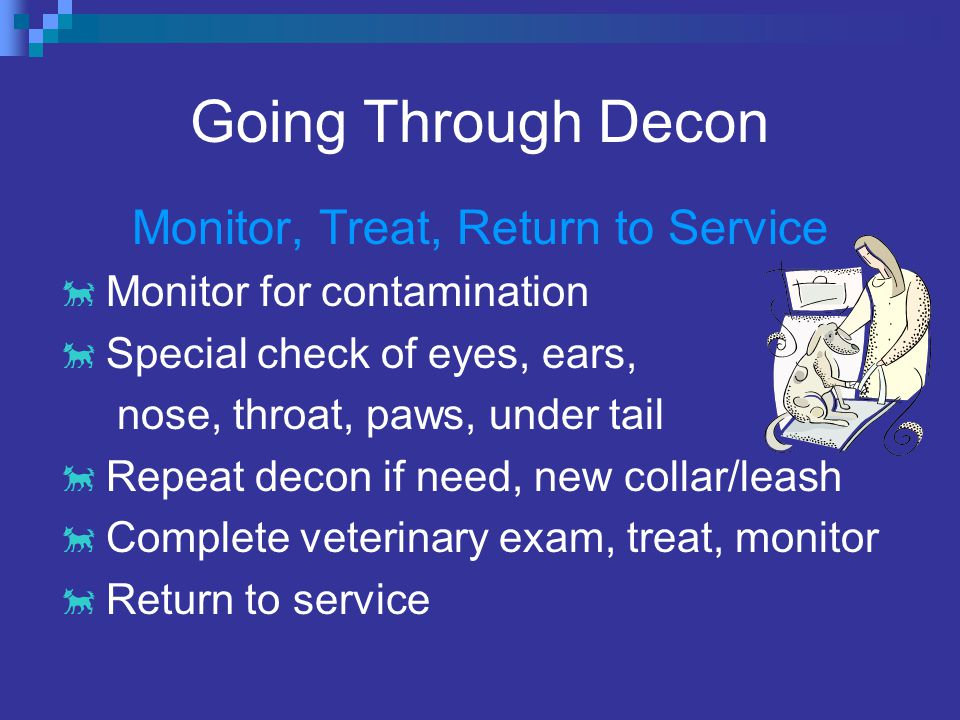 Going Through Decon Monitor, Treat, Return to Service  Monitor for contamination  Special check of eyes, ears, nose, throat, paws, under tail  Repeat decon if need, new collar/leash  Complete veterinary exam, treat, monitor  Return to service