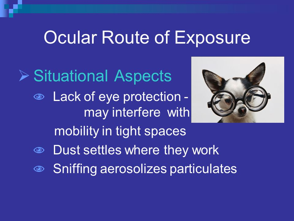 Ocular Route of Exposure  Situational Aspects  Lack of eye protection - may interfere with mobility in tight spaces  Dust settles where they work  Sniffing aerosolizes particulates