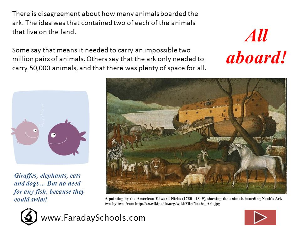 www.FaradaySchools.com There is disagreement about how many animals boarded the ark. The idea was that contained two of each of the animals that live