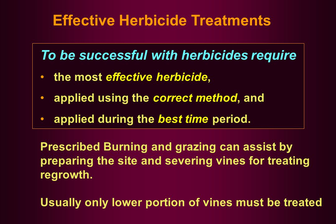 Effective Herbicide Treatments To be successful with herbicides require the most effective herbicide, applied using the correct method, and applied during the best time period.