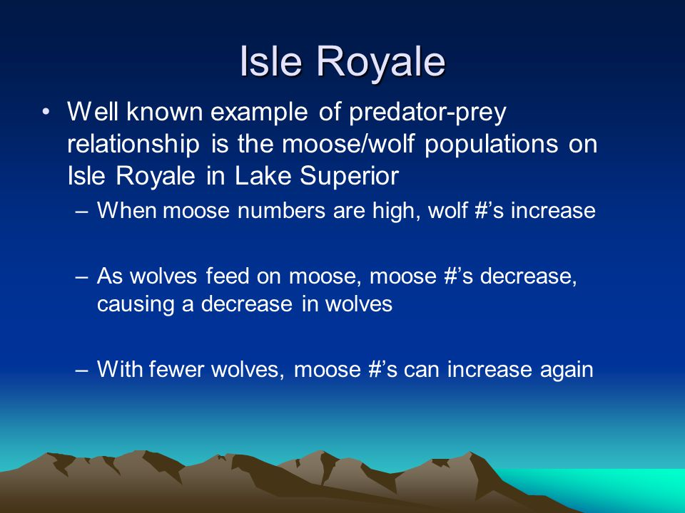 Isle Royale Well known example of predator-prey relationship is the moose/wolf populations on Isle Royale in Lake Superior –When moose numbers are high, wolf #'s increase –As wolves feed on moose, moose #'s decrease, causing a decrease in wolves –With fewer wolves, moose #'s can increase again