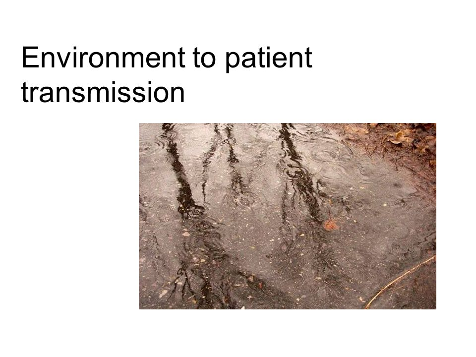 Environment to patient transmission