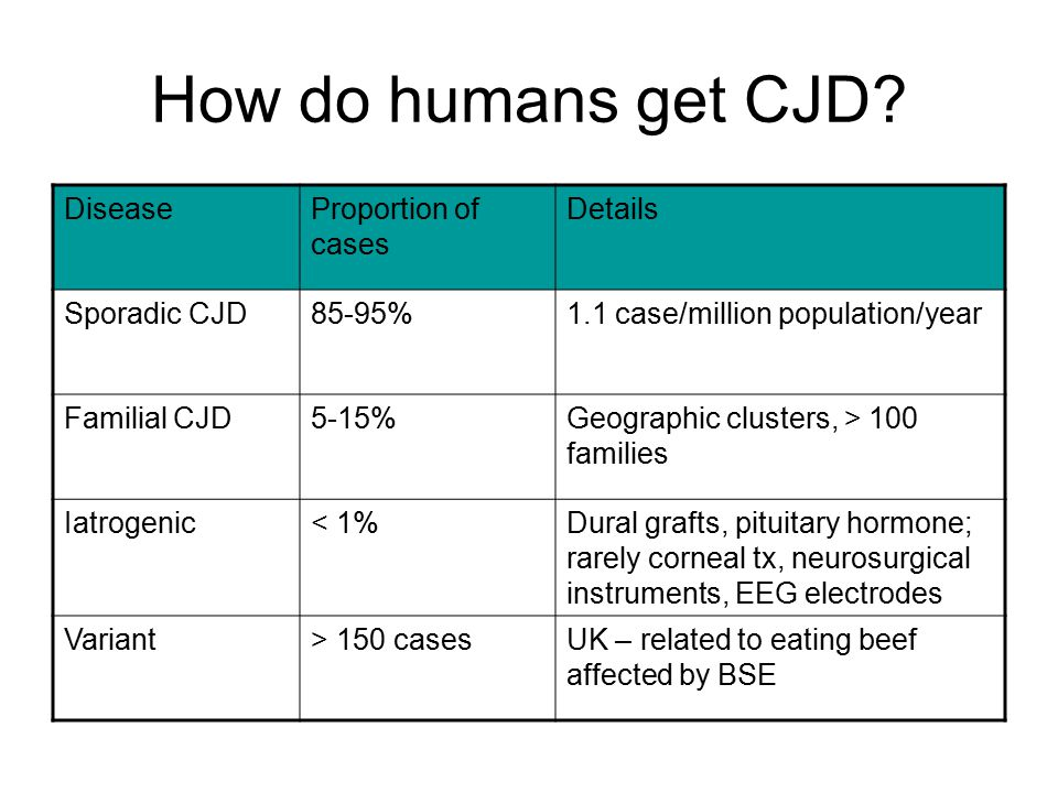 How do humans get CJD.