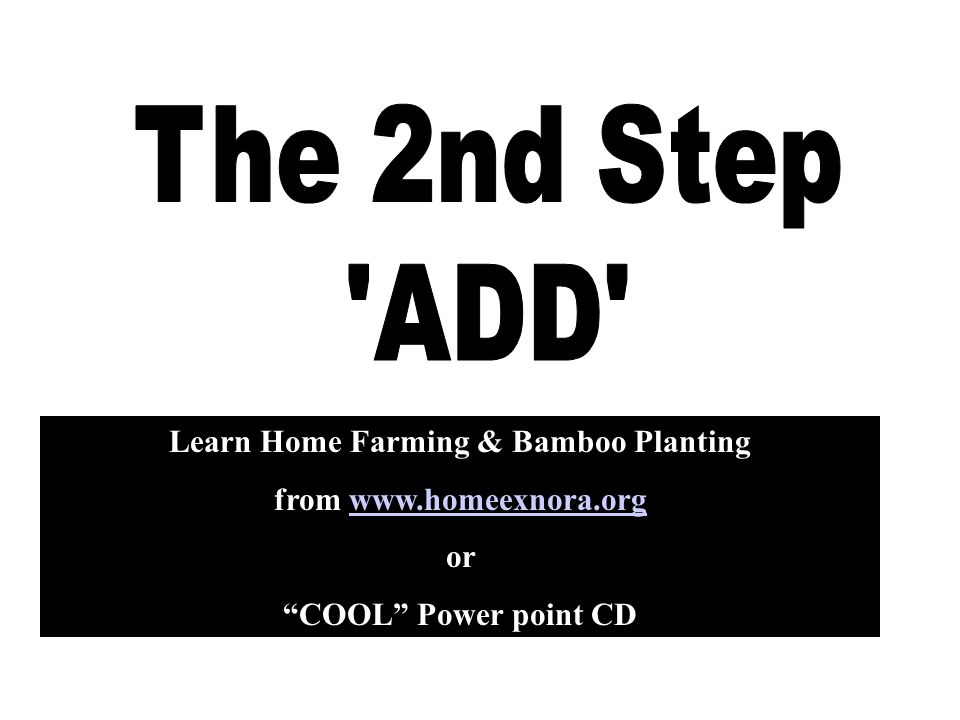 "Learn Home Farming & Bamboo Planting from www.homeexnora.orgwww.homeexnora.org or ""COOL"" Power point CD"