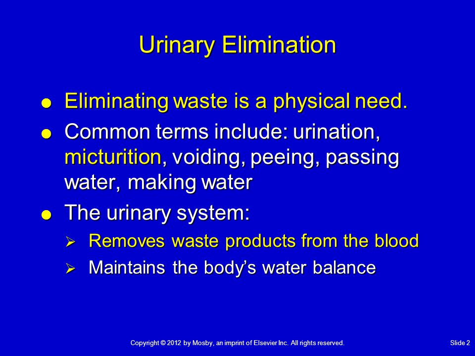 Urinary Elimination  Eliminating waste is a physical need.